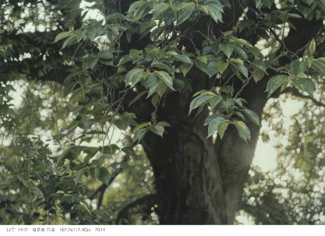 나무-1412.JPG