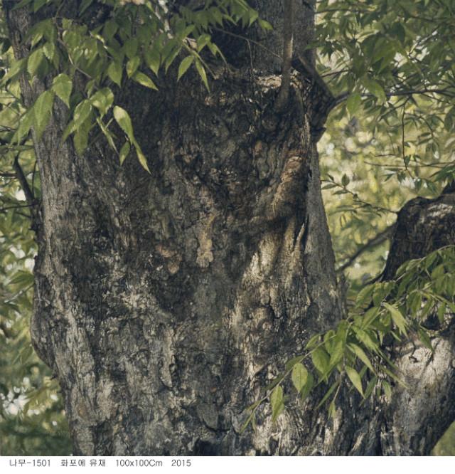 나무-1501.JPG