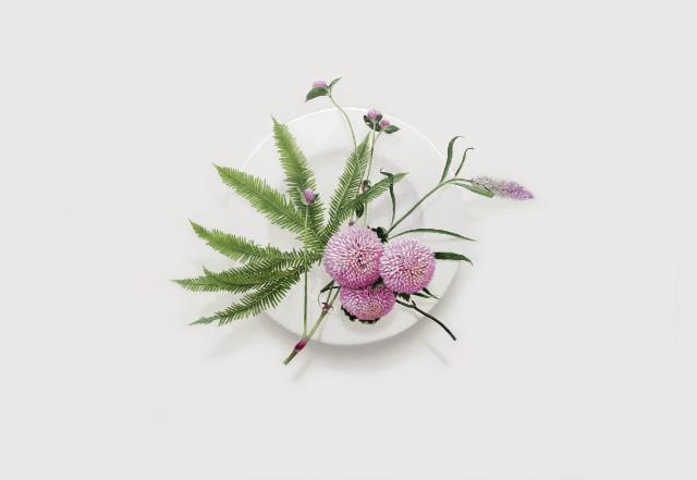 Eating Flower_53x72.7cm_oil on canvas_2018_윤영혜_퐁퐁국화.jpg