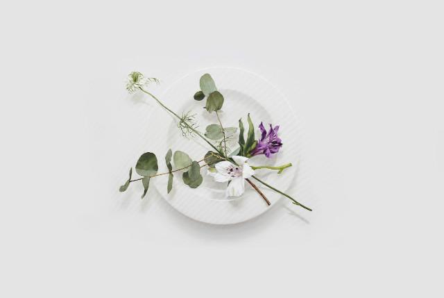 Eating Flower_50x72.7cm_oil on canvas_2018_윤영혜_유칼립투스,흰,보라색꽃.jpg