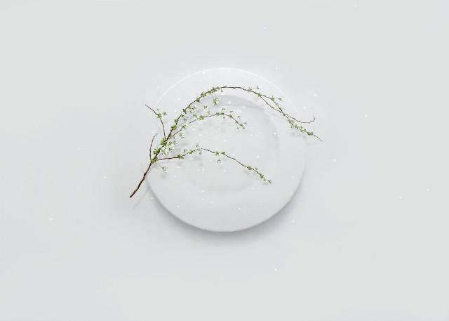 Eating Flower_65.1x90.9cm_oil on canvas_2018_윤영혜_설유화.jpg