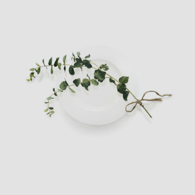 Eating Flower_150x150cm_oil on canvas_2018_윤영혜_유칼립투스노끈.jpg