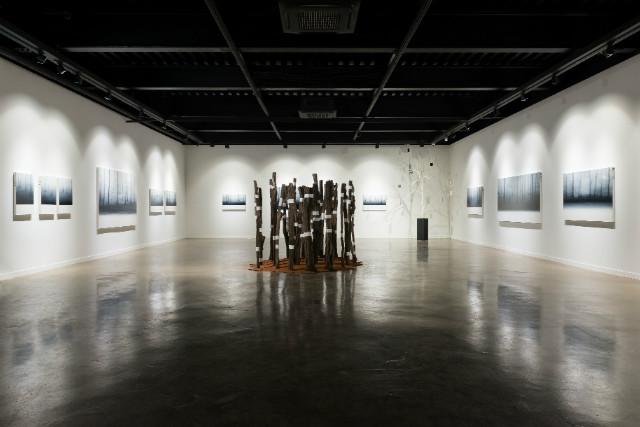 2019 Gallery OMOKE View  _DSC5329.jpg