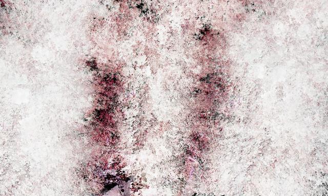 배상순_Quercus Phillyraeoides (Ubamegashi Oak Forest i)_200x120cm_Face-mounted archival pigment print_2019.jpg