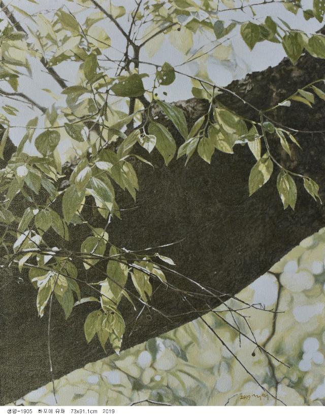 생명-1905.jpg